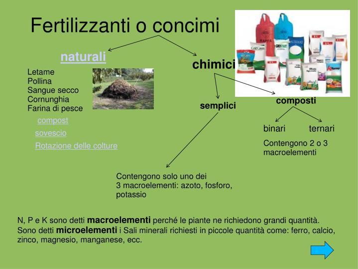Fertilizzanti o concimi