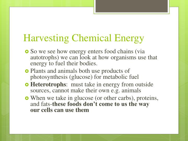 Harvesting Chemical Energy