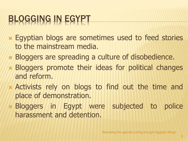 Egyptian blogs are sometimes used to feed stories to the mainstream media.