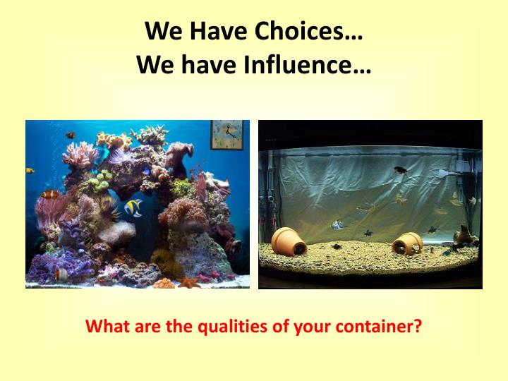 We Have Choices…