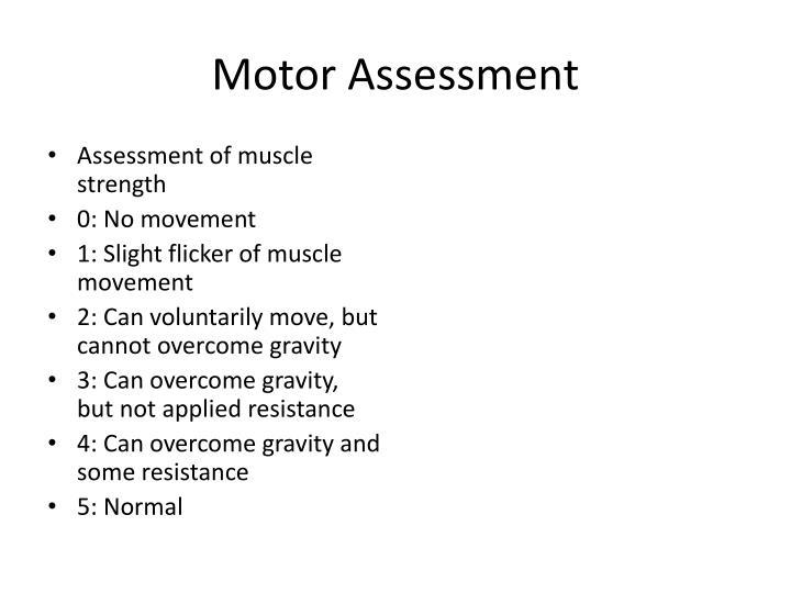 Motor Assessment