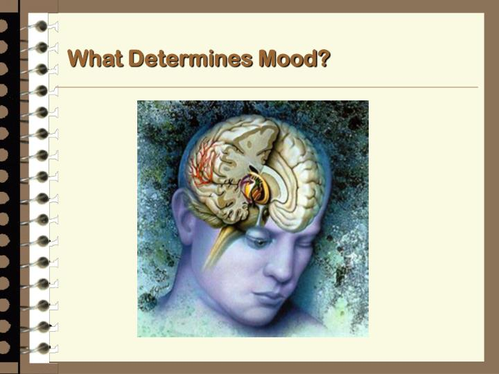 What Determines Mood?