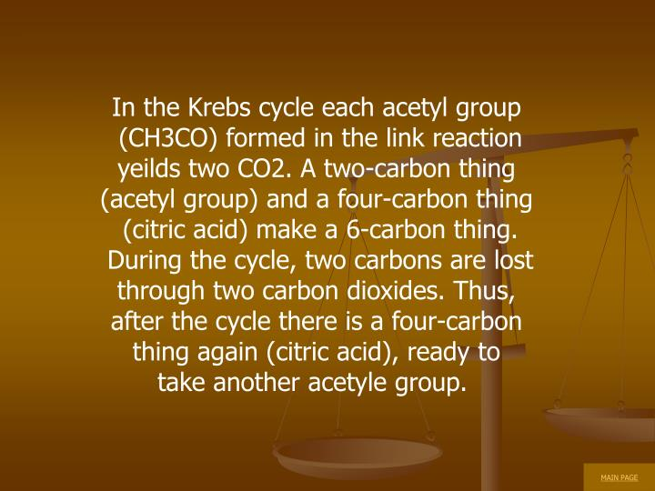 In the Krebs cycle each acetyl group