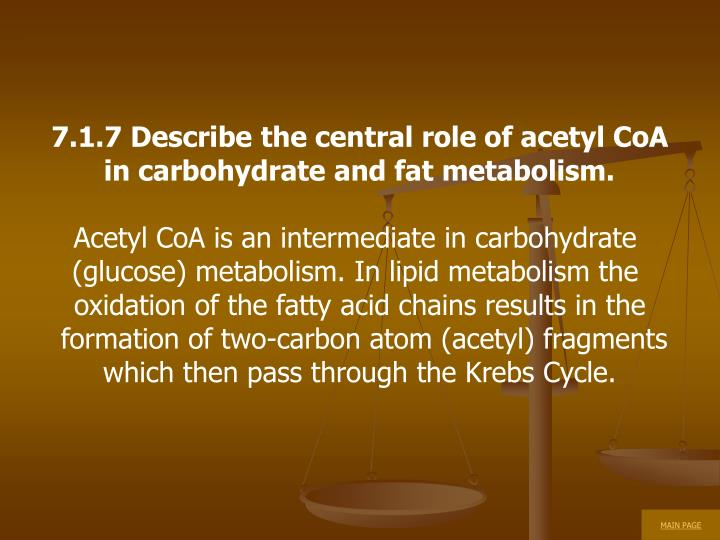 7.1.7 Describe the central role of acetyl CoA