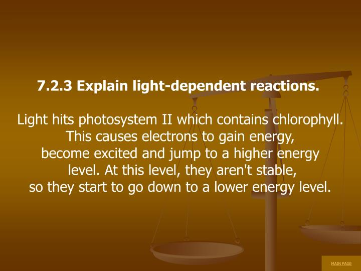 7.2.3 Explain light-dependent reactions.