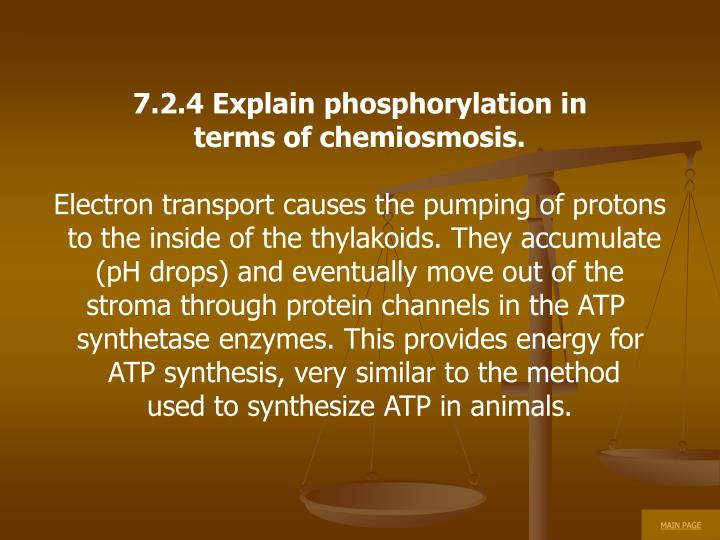 7.2.4 Explain phosphorylation in