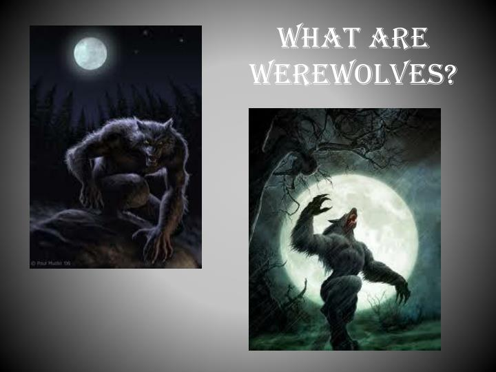 WHAT ARE WEREWOLVES?