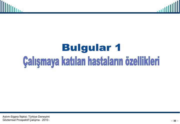 Bulgular 1