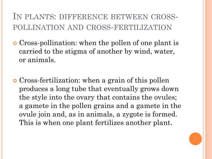 In plants: difference between cross-pollination and cross-fertilization