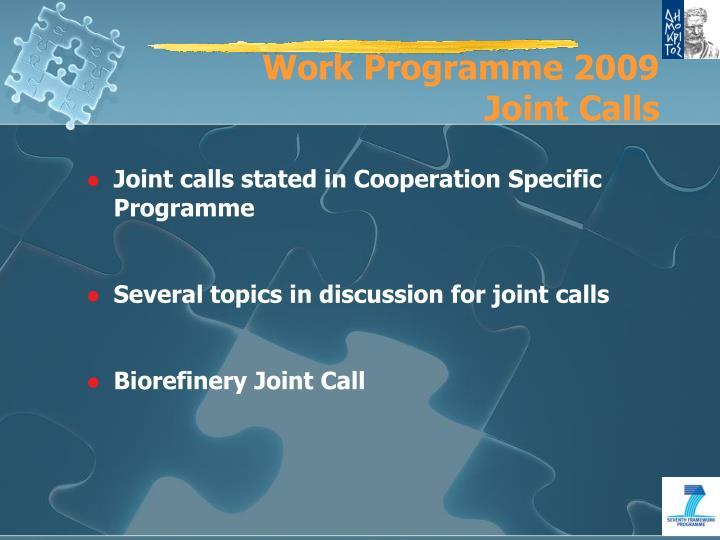 Work Programme 2009