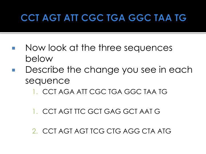 CCT AGT ATT CGC TGA GGC TAA TG