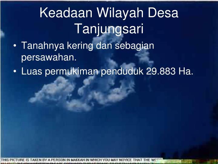 Keadaan Wilayah Desa Tanjungsari