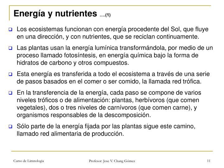Energía y nutrientes