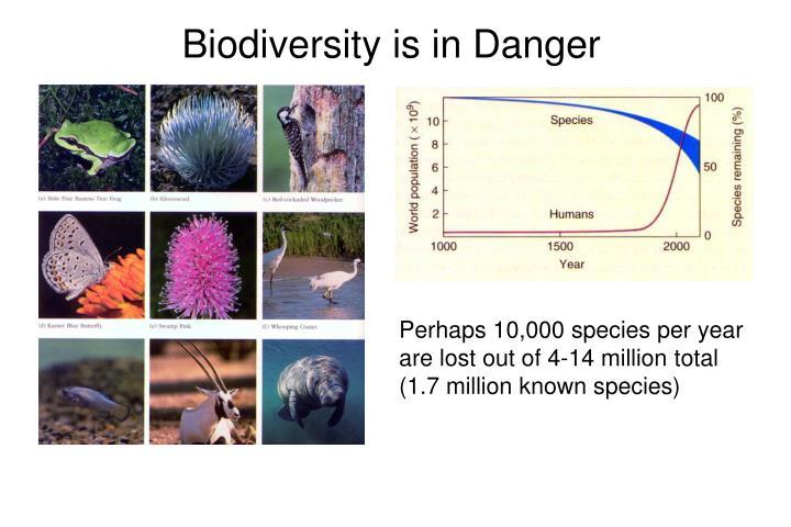 Biodiversity is in Danger