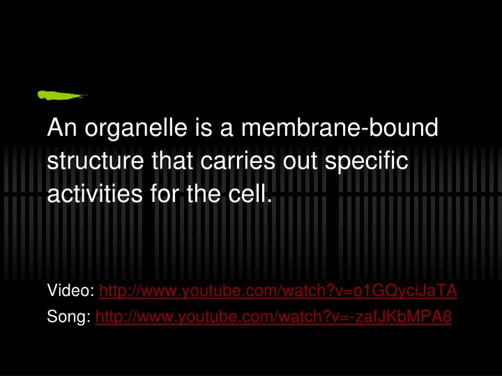 An organelle is a membrane-bound structure that carries out specific activities for the cell.
