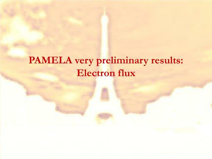 PAMELA very preliminary results: