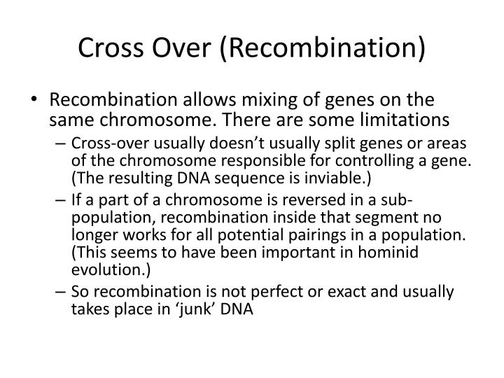Cross Over (Recombination)