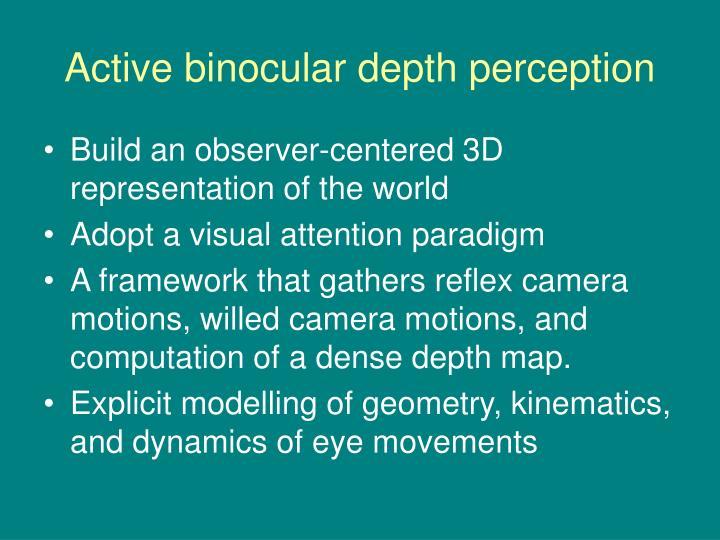 Active binocular depth perception
