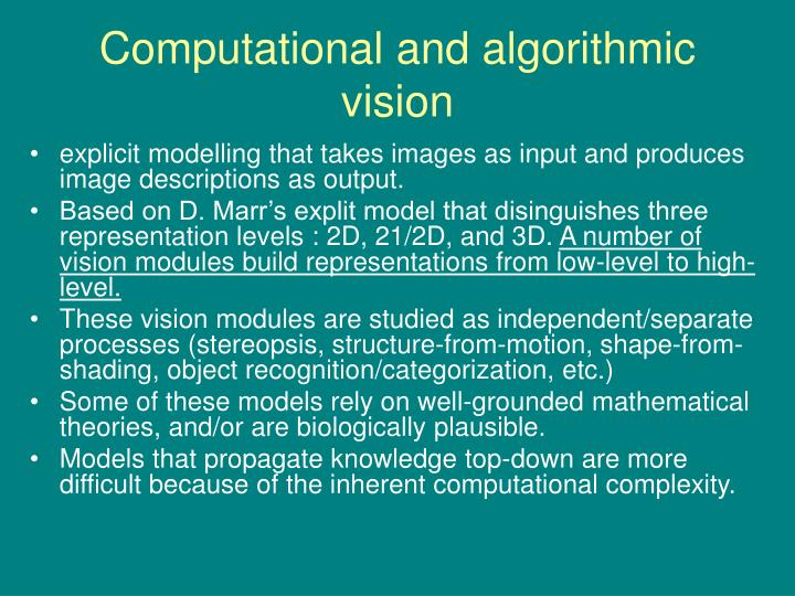 Computational and algorithmic vision