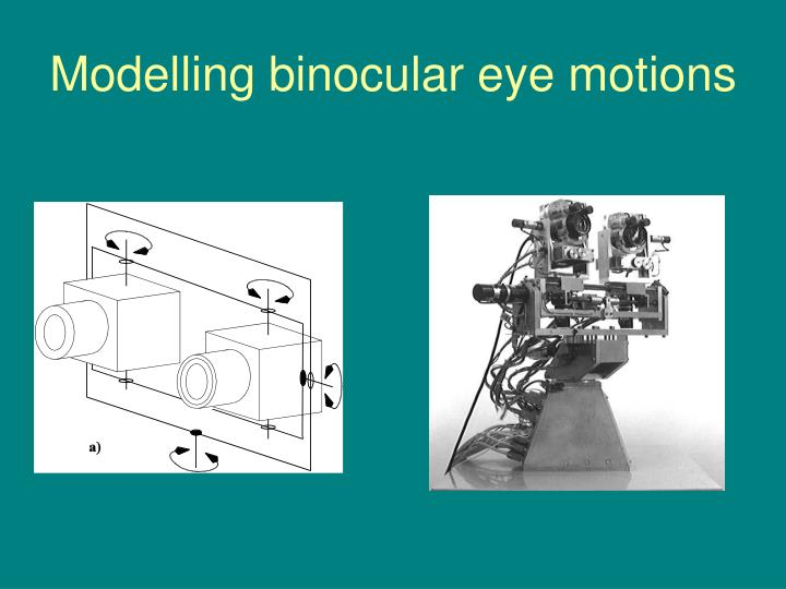 Modelling binocular eye motions