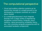 the computational perspective