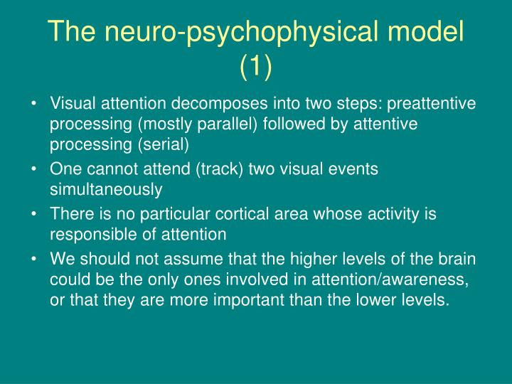 The neuro-psychophysical model (1)