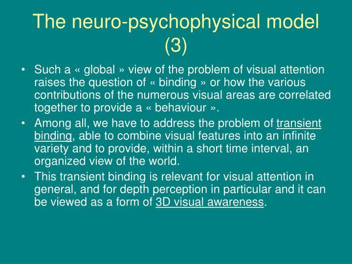 The neuro-psychophysical model (3)