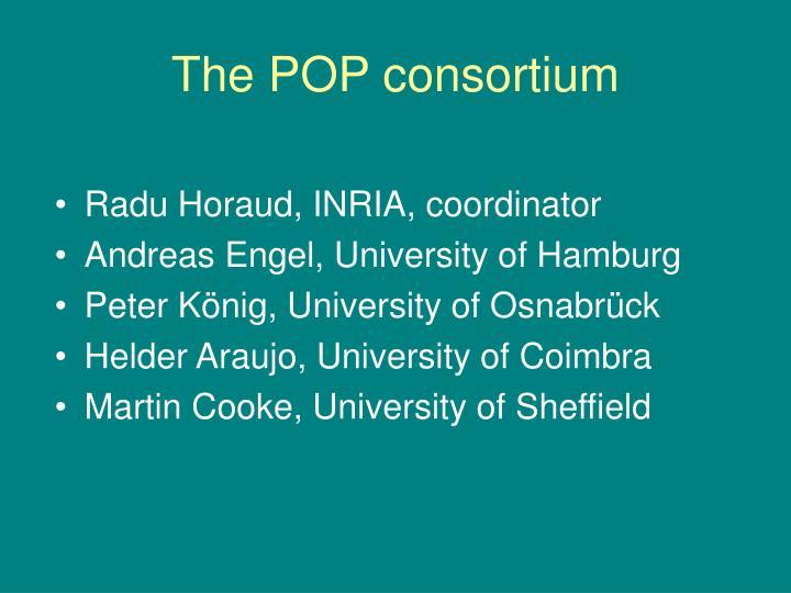 The POP consortium