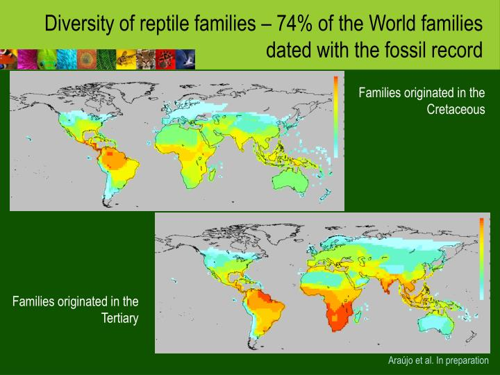 Diversity of reptile families – 74% of the World families dated with the fossil record