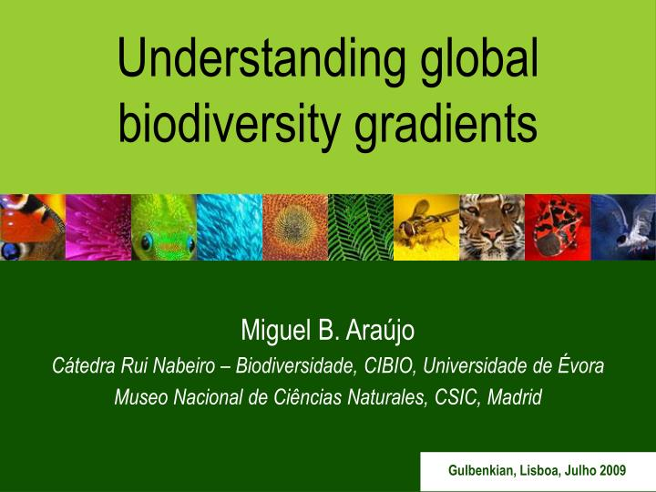Understanding global biodiversity gradients