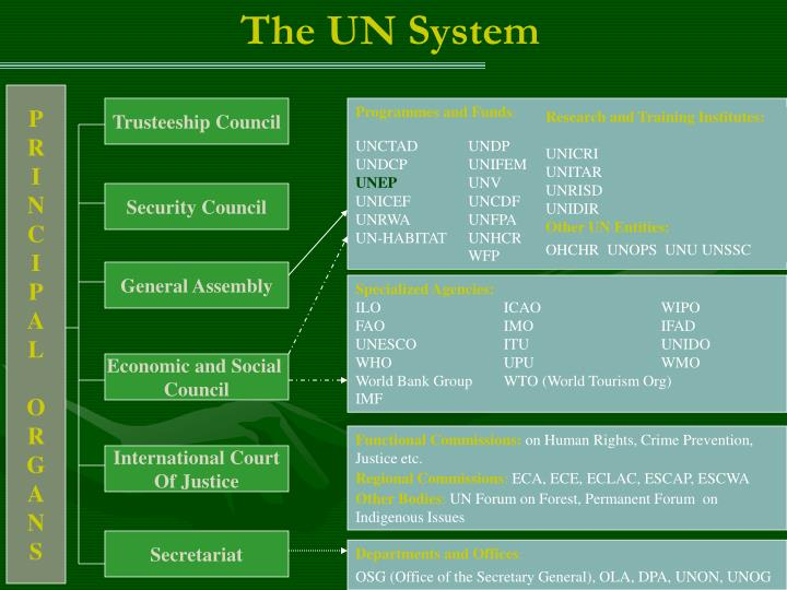 The UN System