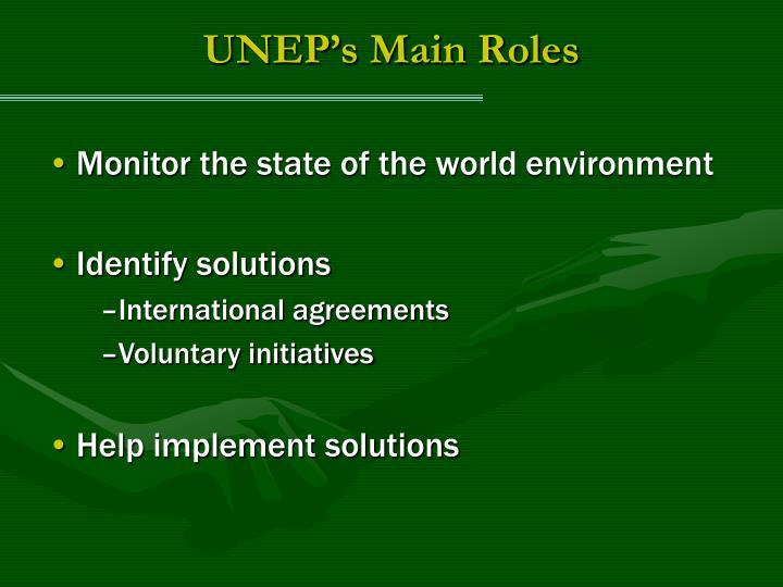 UNEP's Main Roles