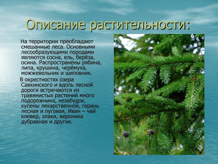 Описание растительности: