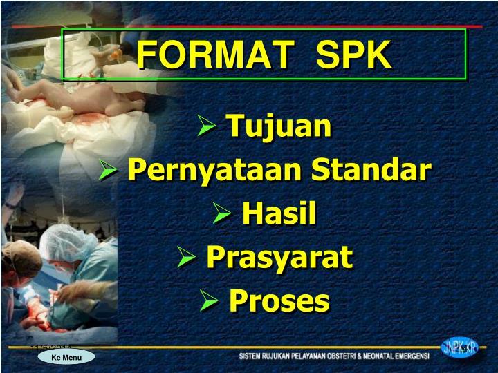 FORMAT  SPK