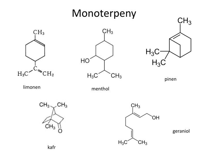 Monoterpeny