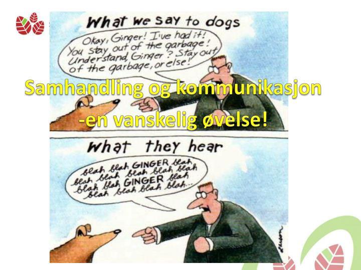 Samhandling og kommunikasjon