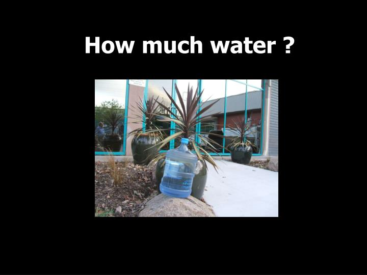 How much water ?