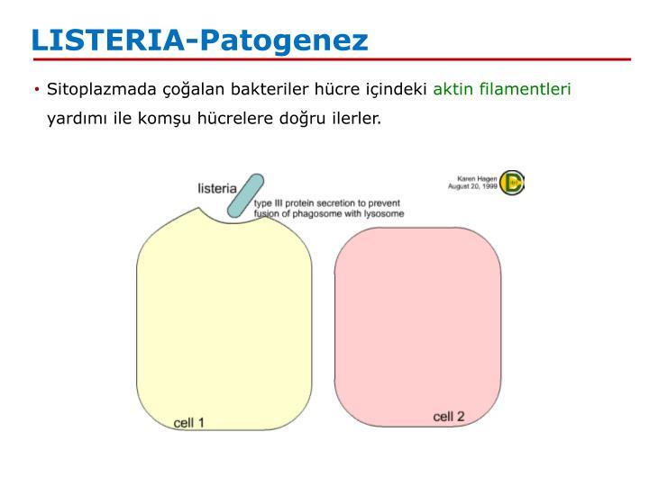 LISTERIA-