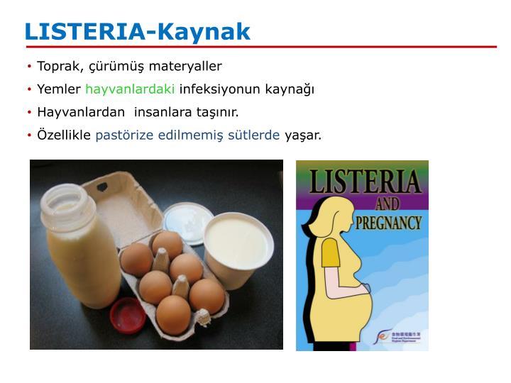 LISTERIA-Kaynak