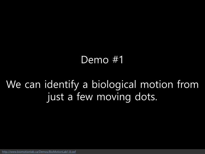 Demo #1