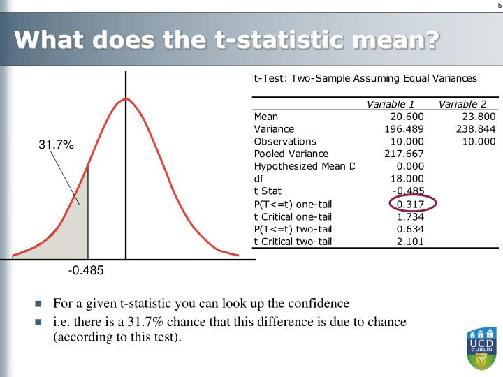 What does the t-statistic mean?