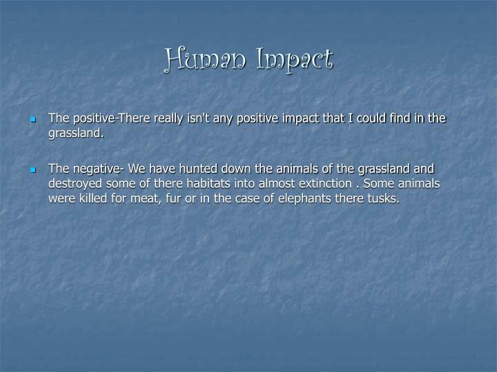 Human Impact
