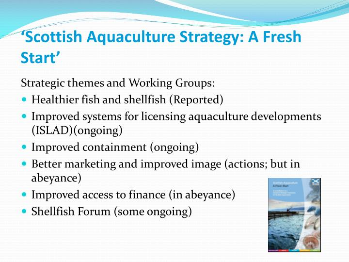 'Scottish Aquaculture Strategy: A Fresh Start'