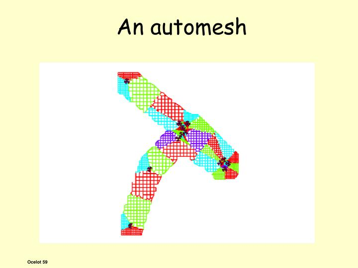 An automesh