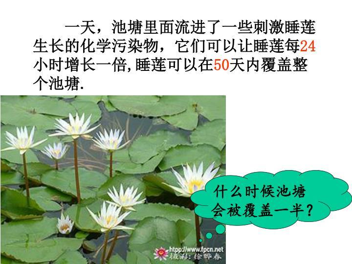 一天,池塘里面流进了一些刺激睡莲生长的化学污染物,它们可以让睡莲每