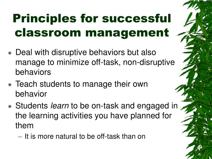 Principles for successful classroom management