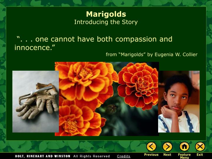 "marigolds paragraph Can one have both compassion and innocence eugenia collier poses this question in her intriguing short story ""marigolds"" ""marigolds"" takes place in a depression-era, poverty-stricken."