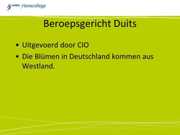 Beroepsgericht Duits