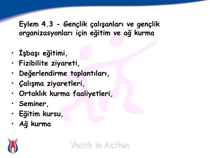 Eylem 4.3 - Gençlik çalışanları ve gençlik organizasyonları için eğitim ve ağ kurma