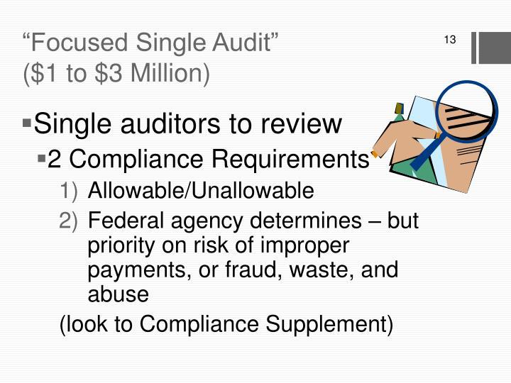 """""""Focused Single Audit"""""""